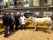 Thumbnail for article : Quality show forward at Caithness Christmas show and sale