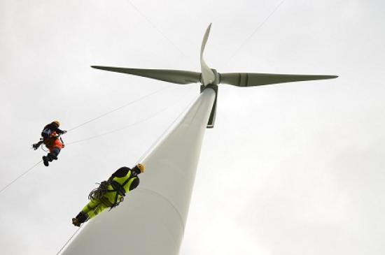 Photograph of Employment in renewables sees 5% growth in one year