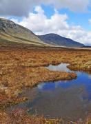 Thumbnail for article : New Research Shows Scottish Public Supports Investments To Restore Peatlands