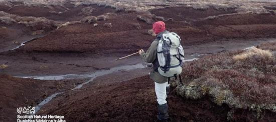 Photograph of Applications open for funding to restore Scotland's peatlands