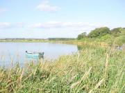 Thumbnail for article : Public warned of algal bloom presence at Loch Watten, Caithness
